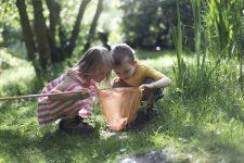 6 tips som gör faktainlärningen kul